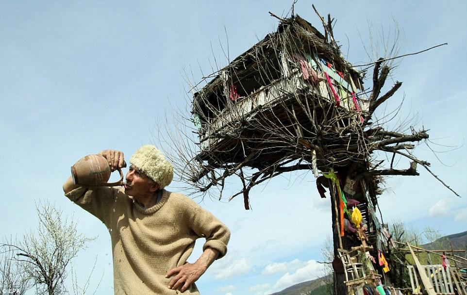 老人辞去工作在树上给自己做了一间房子,一住就是十多年