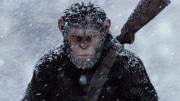 《猩球崛起3:终极之战》曝中国独家终极预告