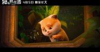 猫与桃花源(终极预告)