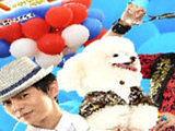 """《快乐到家》首映 快乐家族回应""""毒舌""""质疑"""