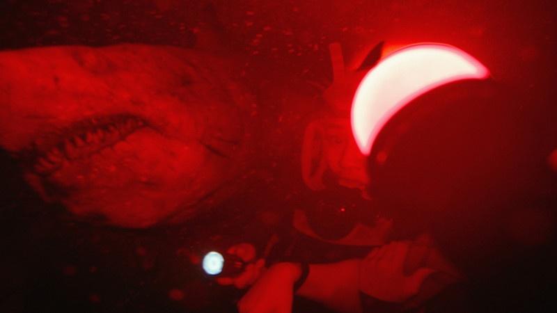 《鲨海逃生》终极预告 盲鲨嗜血逐猎开年震撼观感