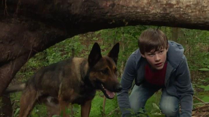 军犬麦克斯 电视版1