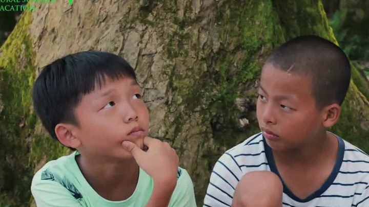 蜻蜓少年 预告片1:定档版 (中文字幕)