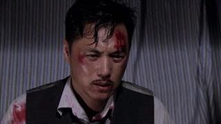 老虎最疼爱的儿子毛球被秦先生打死 好可怜一男的