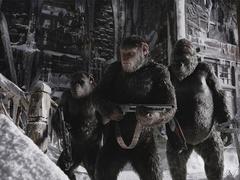 """《猩球崛起3》新预告 人类步步紧逼凯撒""""怒""""了"""