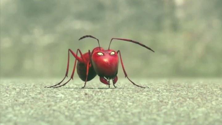 昆虫总动员 片段2:小昆虫们