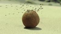 《昆虫总动员2:来自远方的后援军》推广曲及MV上线,8月23日化身最萌勇敢冒险家