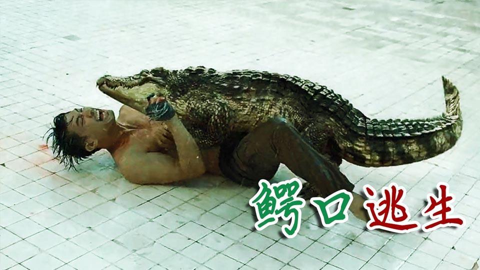 【羞羞的影评388】情侣被困6米深游泳池,偏偏里面有条鳄鱼!