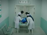 怕怕之护士笔记  第21集  输血