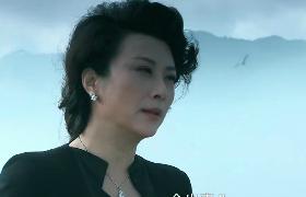 母子连心-14:李响被丈夫利用成通缉犯