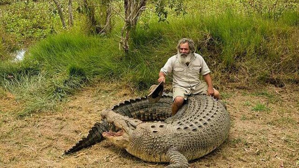 太牛掰了!澳大利亚七旬老翁把鳄鱼当坐骑