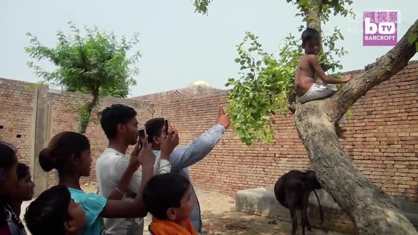人生而不同:印度男孩长尾巴被供为神