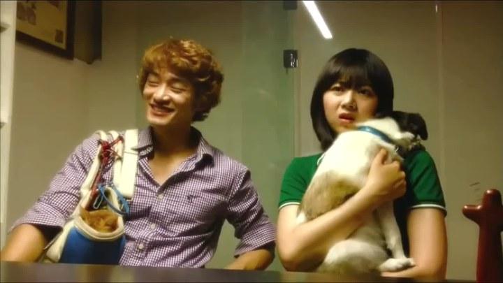 那狗那猫 韩国预告片