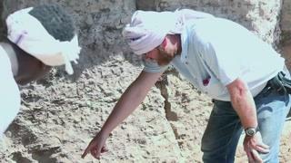 围观解开木乃伊裹尸布竟是一种活动?欧洲人奇怪的癖好