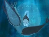 品评电影《海洋之歌》之美 唯美画面暖心治愈