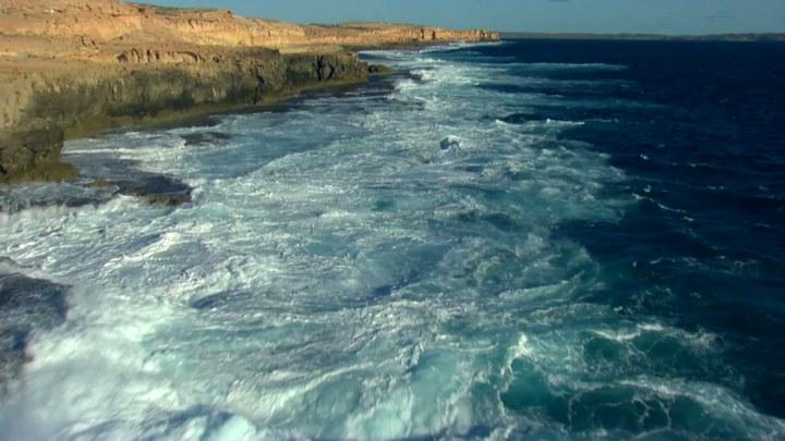 海洋星球 美国预告片2