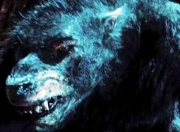 《黑夜传说4》中文片段 赛琳娜母性爆发恶战狼人
