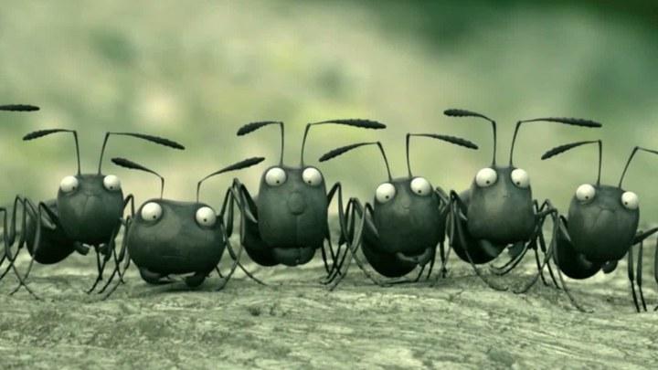 昆虫总动员 片段1