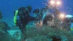 海底世界3D 花絮之Indonesia