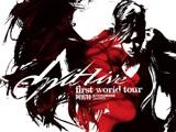 张惠妹阿密特首次世界巡回演唱会