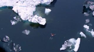 人体奥秘:冷藏仓库里做实验 竟然还要在冰湖里游泳?!