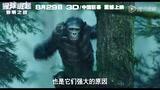 《猩球崛起2》掀人猿狂欢夜 导演录VCR问候观众