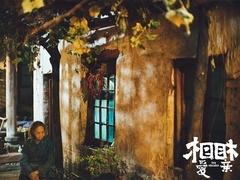 《相爱相亲》删减片段 吴彦姝表露爱的心迹