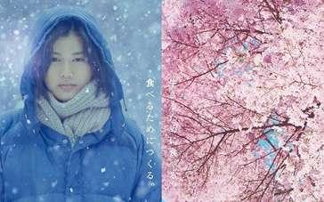 《小森林》冬春篇中文预告 桥本爱跨越寒冬迎接新生