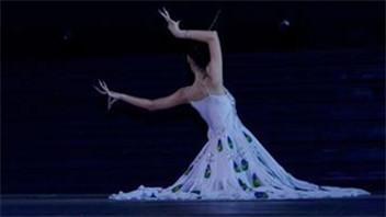 孔雀舞舞蹈视频 组合与动作分解