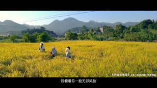 《毕业初体验》MV:《那夏》