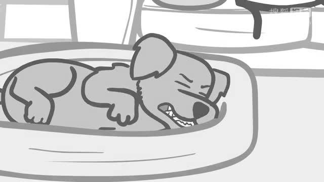 狗的梦想-氰化物和幸福的迷你