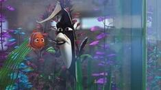 3D海底总动员 片段之Gill & Nemo
