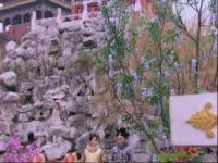 山河恋之美人无泪-11预告