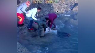 小伙海边救了一姑娘,谁知被赖上了#北京青年#南阳正恒mcn #DOU上热门