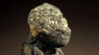 彭特国真的只是神话吗?3000多年前的狒狒遗骸能解开谜团吗?