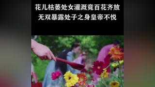 #天泪传奇之凤凰无双    #美人  #王丽坤 只有处女灌溉才能恢复 #郑元畅