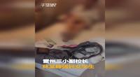 【广东】丧心病狂副校长强奸女学生4年 居然还录下视频