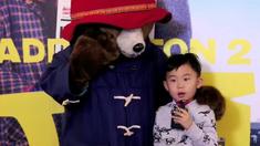 帕丁顿熊2 口碑特辑
