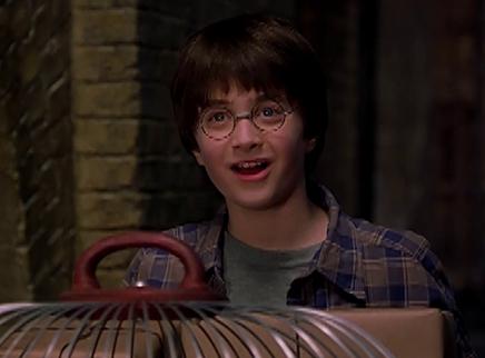 """《哈利·波特与魔法石》""""魔法车站""""版片段 9"""