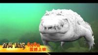 《百万巨鳄》特效解密视频