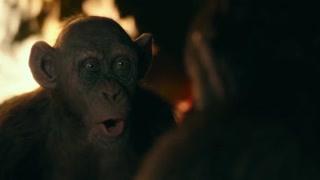 猩球崛起3:全新会说话猿类
