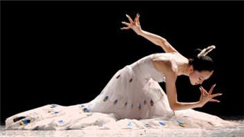 孔雀飞来教学舞蹈
