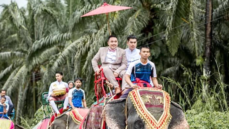 阵势浩大!泰国新郎率12头大象队伍 浩浩荡荡迎新娘