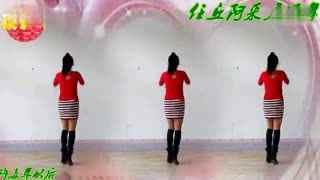 阿采广场舞《许多年以后》