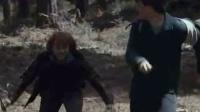 哈利·波特与死亡圣器(上) 删节片段之兄弟反目