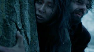 荒野猎人(片段)解救酋长女儿