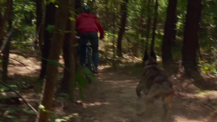 军犬麦克斯 片段3:Bike Chase
