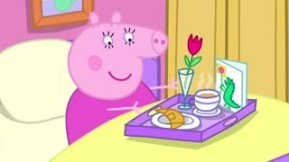 猪妈妈的生日早晨 看来家人准备了不少惊喜呢