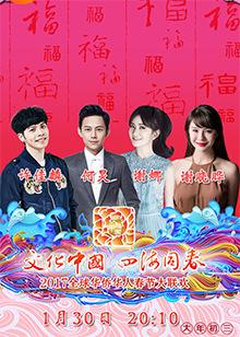 2017全球华侨华人春节大联欢