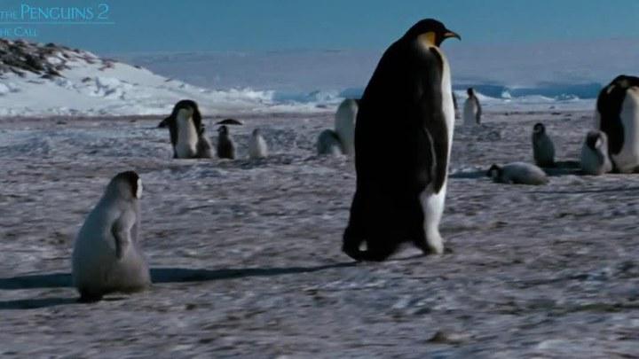 帝企鹅日记2:召唤 香港预告片5 (中文字幕)